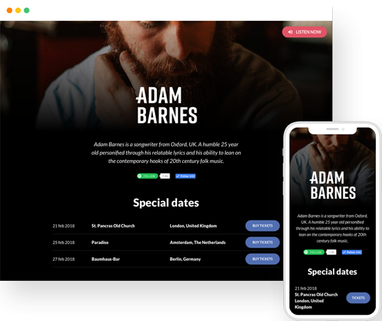 Example Roadie artist website